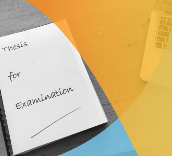 The Examination Process: assessment of written theses or dissertations Post grad environments